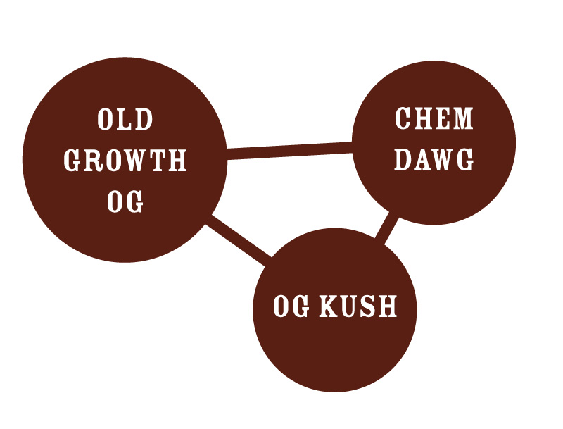 Old Growth OG Strain Chart