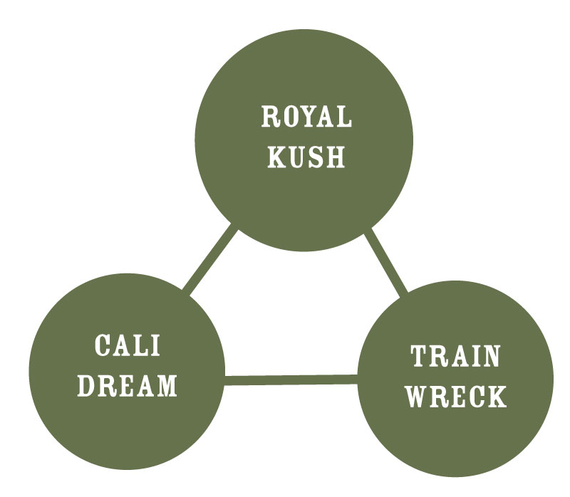 Royal Highness Strain Graph
