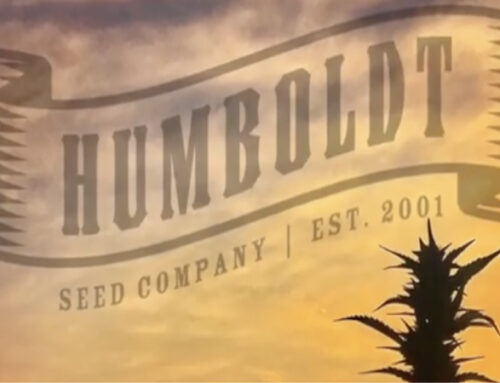 Humboldt Seed Company Promo