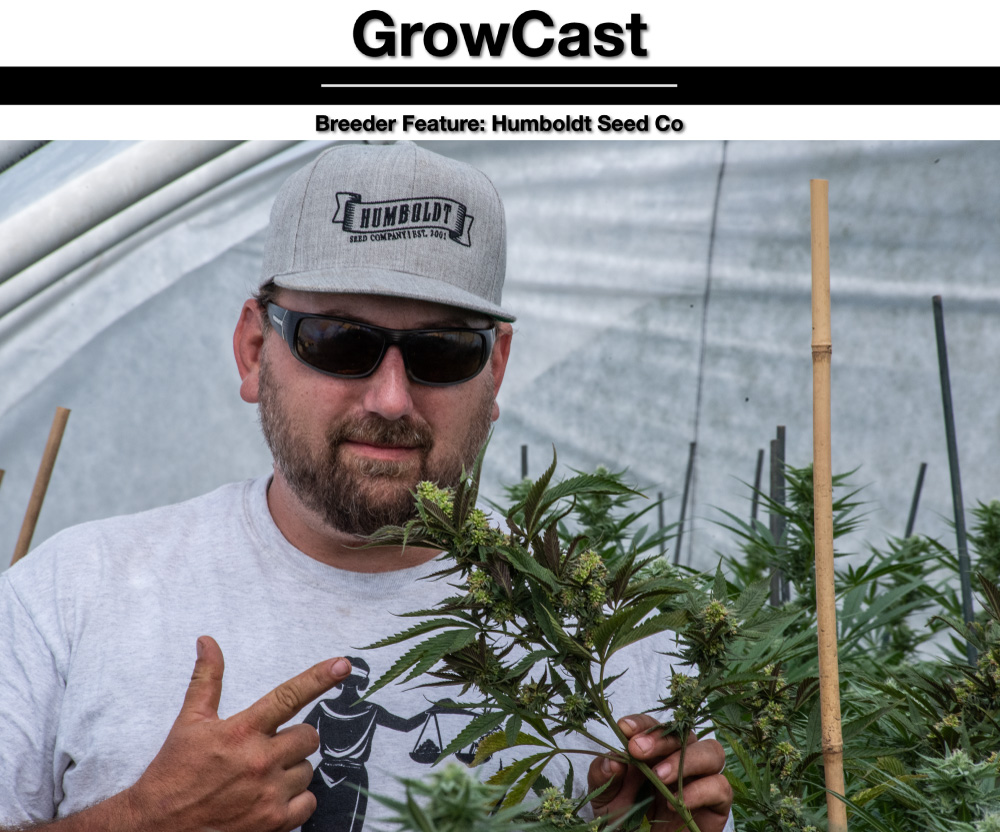 GROW CAST FEATURE