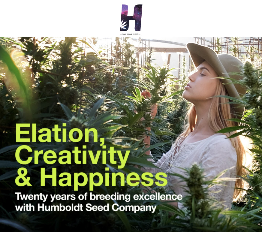 Elation, Creativity, and Happiness Heads Lifestyle Article