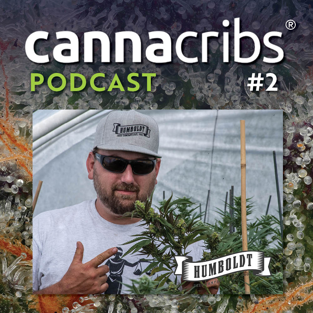 Cannacribs Podcast