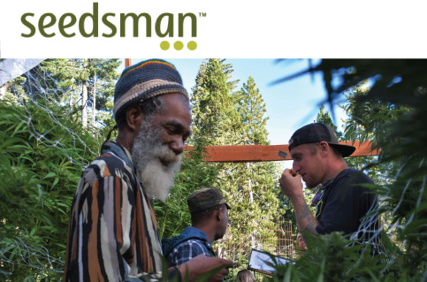 seedman interview