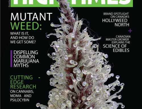 MUTANT CANNABIS – High Times Magazine