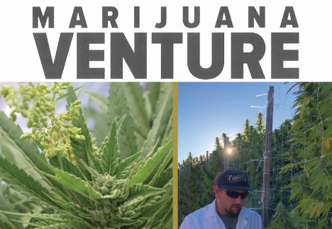 Humboldt Seed Company Feature in Marijuana Venture Magazine