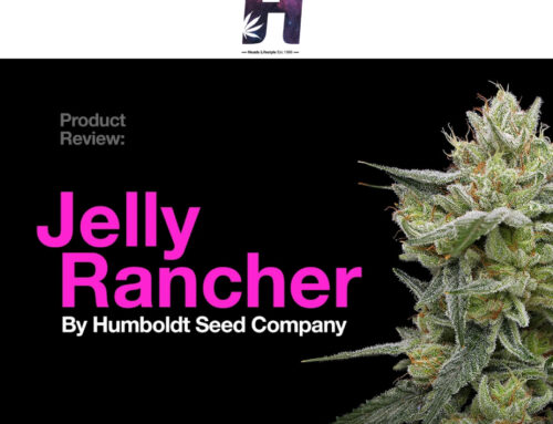 Product Review: Jelly Rancher