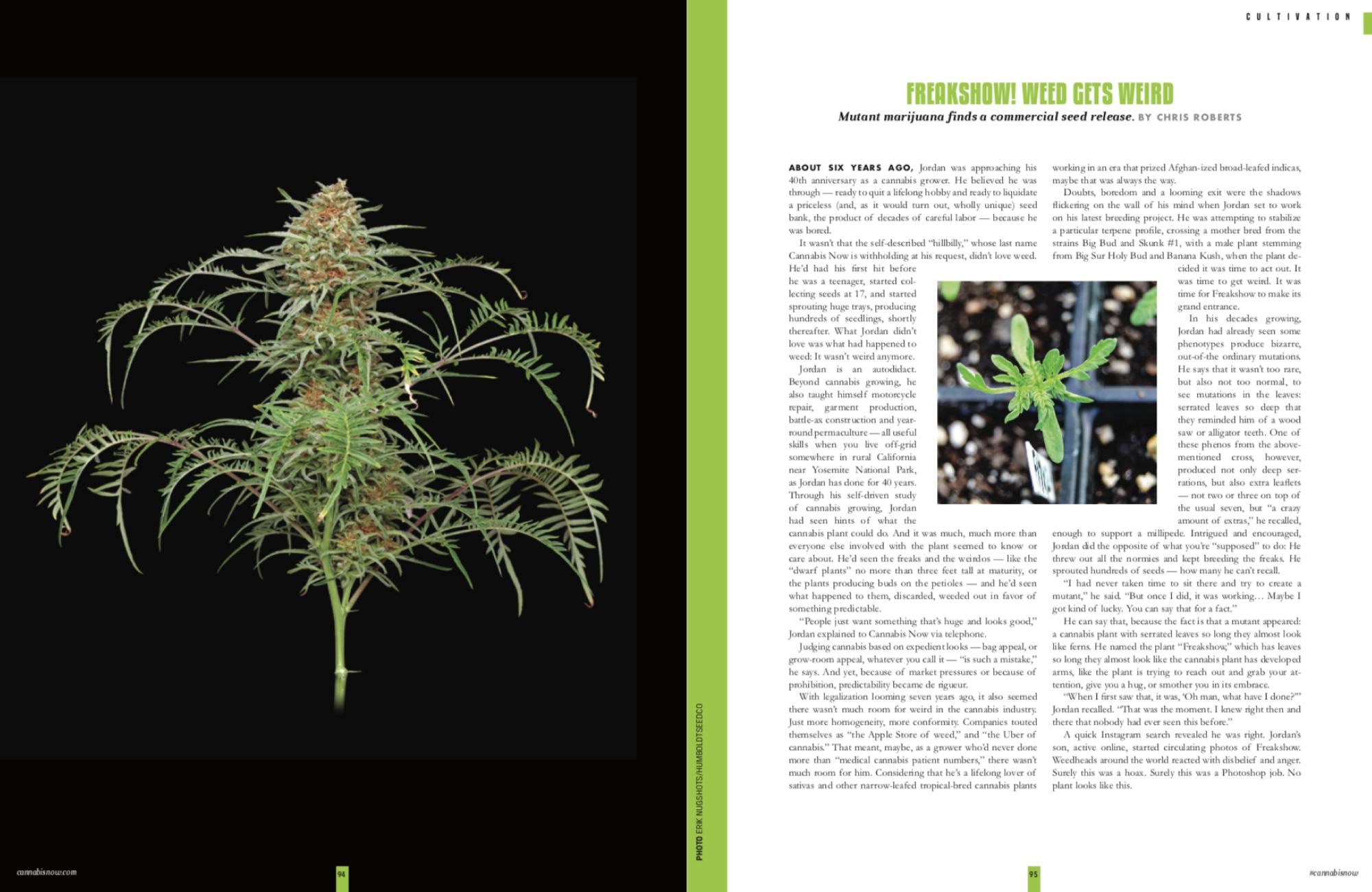 FreakShow_CannabisNow_SPread01