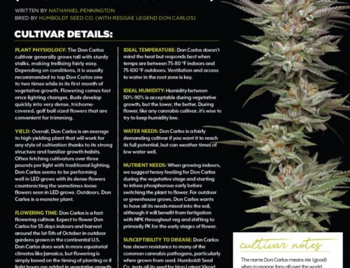 Cannabis Business Times – Don Carlos Feature